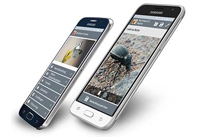 MultiBaseCS Mobile mit neuen Feldern
